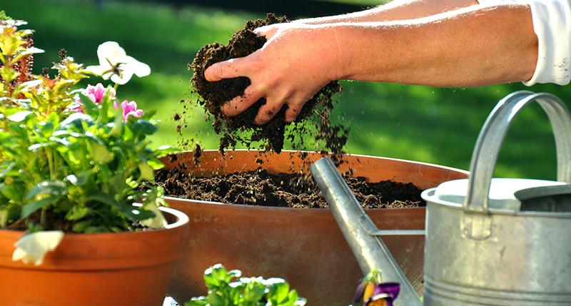 Blumenerde - RAL Gütezeichen Substrate für Pflanzen