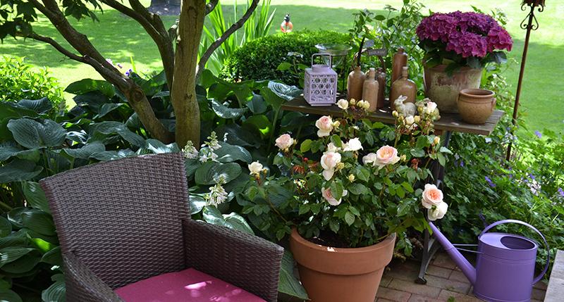 Blumen auf Terrasse